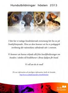 Hundhosten-2013
