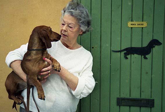 Monica Carlerot 1999 med sin sista hund, SEUvCh Taabbel Mc Zenith, som självklart härstammade från Beckholmenstaxar.